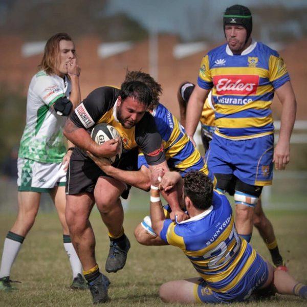 Medowie Rugby 1