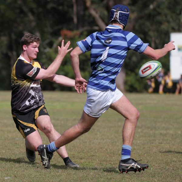Medowie Rugby 6